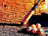 【プロ野球】巨人・亀井が登録抹消、靱帯損傷で全治3週間 画像