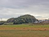 【小さな山旅】「最低山」の魅力…茨城県・天神山(3) 画像