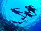 ただのスキューバダイビングスクールではなく本物の海の学校…ただしモナコで 画像