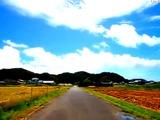 デジタル一眼レフカメラの車載動画が、日本の原風景を映す 画像
