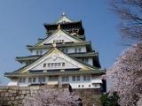 「大坂冬の陣・夏の陣」から400年となる大阪城の桜が満開へ 画像