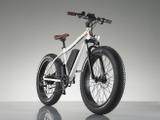 電動ファットバイク「RadRover Electric Fat Bike」…米シアトル発 画像
