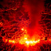 "Yoav - 「Pale Imitation」が彩る、""燃え盛る地下世界""/『ネイチャー』-(C)BBC Earth Productions (Africa) Limited and Reliance Prodco EK LLC 2014"